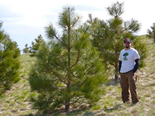 Erim Gomez with Ponderosa Pine Trees